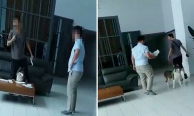 Man Brings His Dog to Apartment Lobby in Sungai Besi, Becomes Furious When Security Guard Confronts Him - WORLD OF BUZZ 1