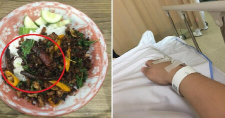 Man Tries World's Hottest Chilli in His Rice, Suffers From Severe Pain & Rushed To ICU - WORLD OF BUZZ 3
