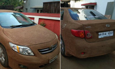 Woman Uses Cow Poop to Protect Her Car From the Extremely Hot Weather Over 40 Degrees - WORLD OF BUZZ