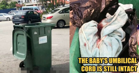 Security Dog Found A Newborn Baby in The Dumpster - WORLD OF BUZZ