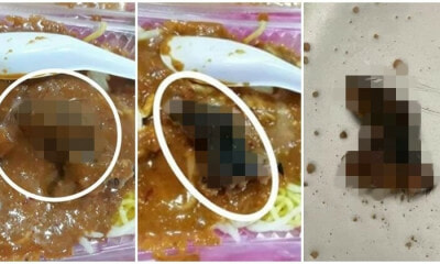 Woman Orders Rojak in KK, Finds Beheaded Rodent When Pouring Peanut Sauce - WORLD OF BUZZ 2