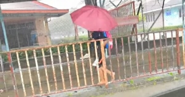 Heartwarming Video Of Pj Girl Carrying Her Autistic Schoolmate In The Rain Is Moving Hearts - World Of Buzz