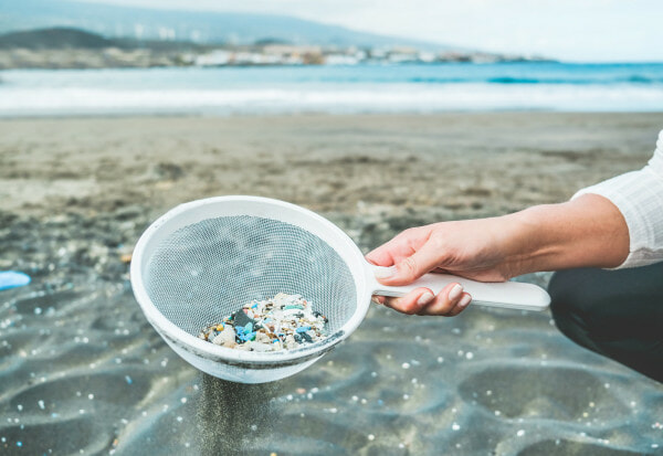 Study: We Consume An Average of 5 Grams Of Plastic A Week, The Same Weight As One Credit Card - WORLD OF BUZZ