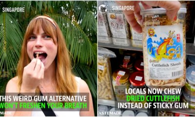 US Media Says Singaporeans Are CHEWING Dried Cuttlefish Because the Country Banned Gum - WORLD OF BUZZ 1
