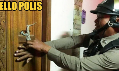 "Woman Calls Police When She Finds a Small Gecko ""Blocking"" Her Front Door - WORLD OF BUZZ 1"