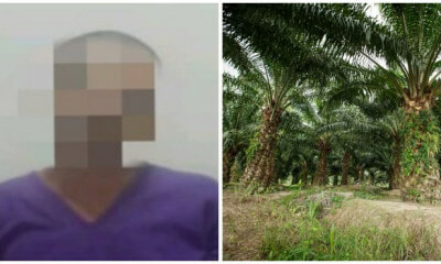 53yo Father Lures 16yo Daughter into Sabah Oil Palm Plantation To Rape Her - WORLD OF BUZZ 2