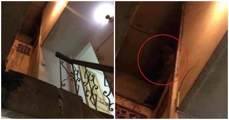 Man Finds Viral Ghost Picture, Shares - World Of Buzz
