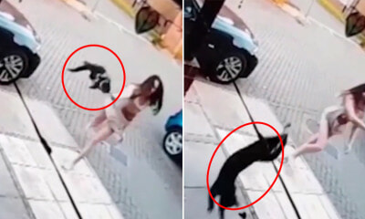 Disturbing Video Shows Woman Flinging Cat at Neighbour's House As It Kept Entering Her Home - WORLD OF BUZZ