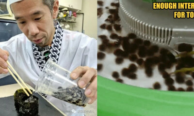 Japan Took Boba to Another Unimaginable Level: Boba Sushi and Flowing Boba Stream - WORLD OF BUZZ 1