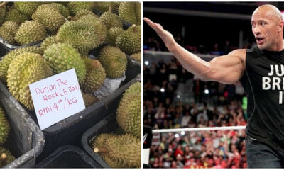 Malacca Durian Dubbed The Rock (Lima Jari) Boasts Big Flavours And A Size To Match - WORLD OF BUZZ