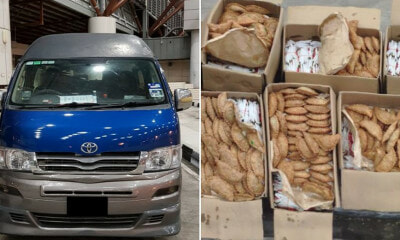 Malaysian Van Stopped at Singapore Checkpoint For Bringing in Boxes Of Curry Puffs - WORLD OF BUZZ 1