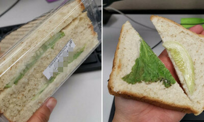 M'sian Buys Chicken Sandwich For Breakfast But Gets One Piece Of Lettuce & A Cucumber Slice Instead - WORLD OF BUZZ 4