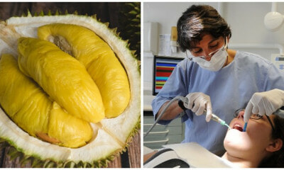 New Study Shows That Durian Can Help Control Tooth Decay and Bad Breath - WORLD OF BUZZ