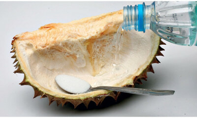 Drinking Water From Durian Husk Remedy Based On So - WORLD OF BUZZ