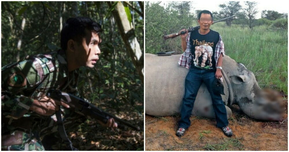 Poachers Can Now Be Shot if Posing a Threat to Perhilitan and Endangered Wildlife - WORLD OF BUZZ 2