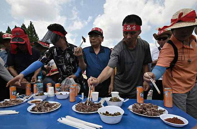 South Koreans Eat Boiled Dog Meat Protesting Against Dog Meat Ban - WORLD OF BUZZ 1