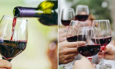 Study: Compound Found in Red Wine Could Help to Reduce Depression & Anxiety - WORLD OF BUZZ 3