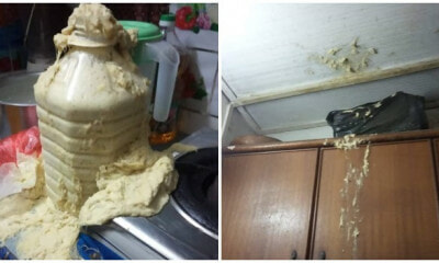 Tempoyak Making Attempt Gone Wrong With Unexpected Explosion - WORLD OF BUZZ 4