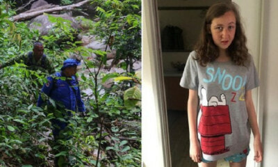 Report: A Body Was Found During Search For Nora Quoirin, Identity Not Yet Determined - WORLD OF BUZZ