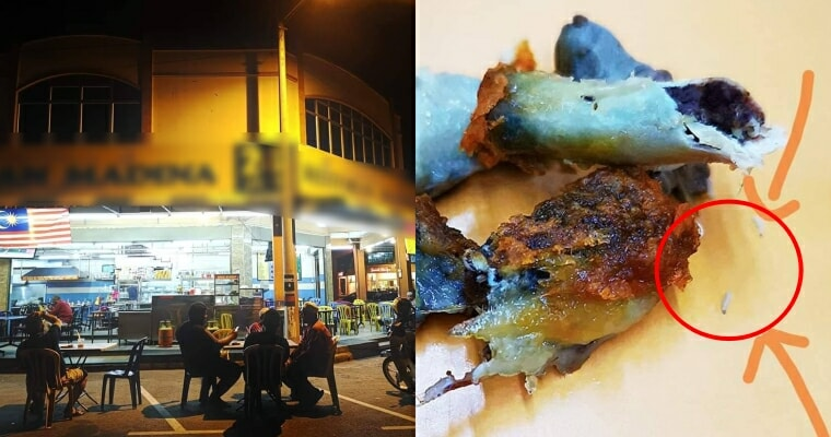 Woman Found Maggots In A Piece Of Chicken She Was Eating, Mamak Manager Blamed Her For Choosing The One With Worms - World Of Buzz 2