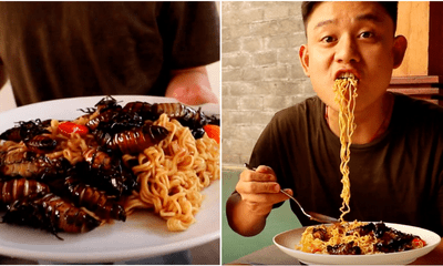 YouTuber Eats Cockroaches With Indomie, Says They Tasted Like Fried Shrimp - WORLD OF BUZZ 4
