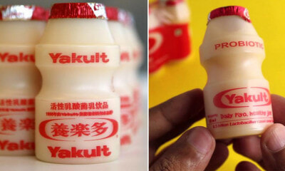 Ever Wondered Why Yakult Comes in Such Cute & Tiny Bottles? We Found Out the Reason! - WORLD OF BUZZ