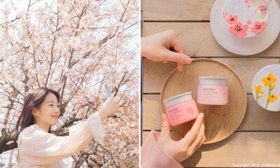 Forget Flying to Jeju For Cherry Blossoms, Visit This Thematic Innisfree Event Instead For Free Goodies & More! - WORLD OF BUZZ