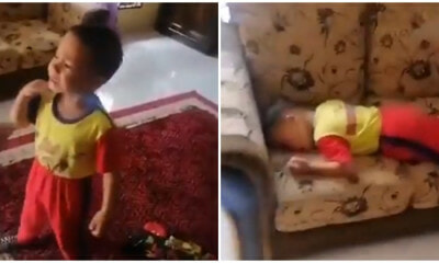"Kids Doesn't Want to Go to School Anymore After Brother Says He's ""Tak Hensem"" - WORLD OF BUZZ"