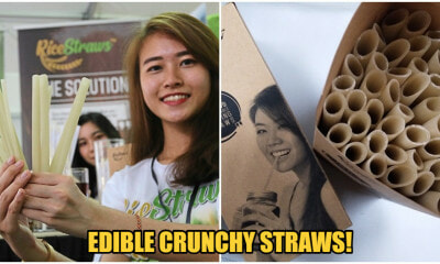 Now You Can Drink Boba While Being Eco-Friendly With This Edible Straw! - WORLD OF BUZZ