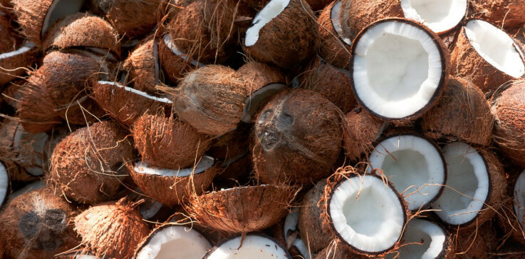 Recycled Coconut Husks can Replace Wood - WORLD OF BUZZ 1
