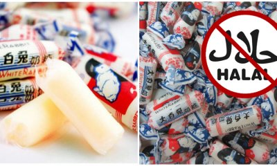White Rabbit Candy Officially NOT Halal, Contains Pig & Cow DNA - WORLD OF BUZZ