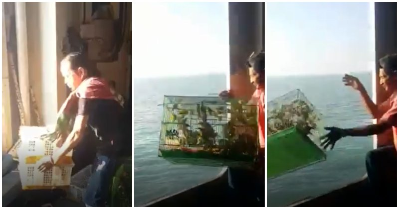 Smugglers Threw Exotic Animals Into The Ocean In Fear of Getting Caught By Marine Police - WORLD OF BUZZ