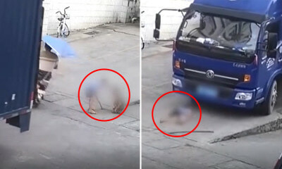 Disturbing Video Shows Lorry Driver Crushing Unsuspecting Boy Playing on the Road - WORLD OF BUZZ 1