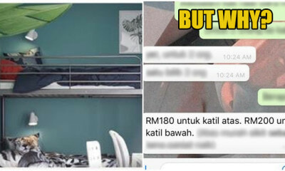Funny Owner Rented A Room With Different Prices Depending On Which Part Of The Bunk Bed That You Choose - WORLD OF BUZZ