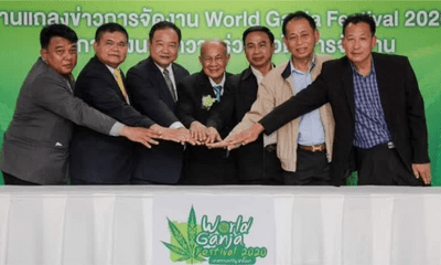 Thailand Plans To Organise The World's First Ganja Festival In January 2020 - WORLD OF BUZZ 2