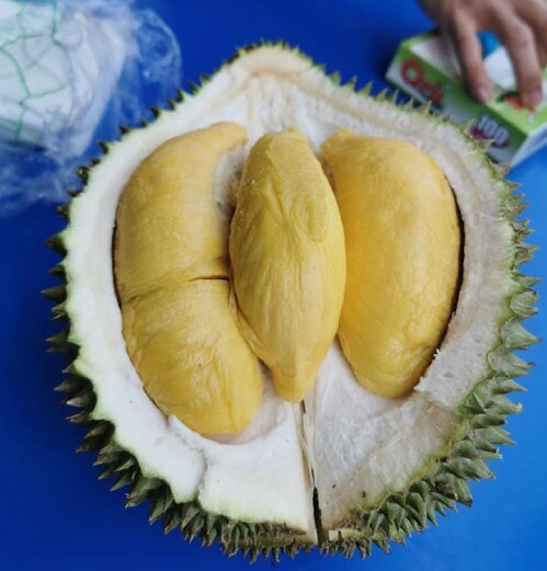 "Tourists Pay RM 540 For ONE Measly 2KG Durian Because Of Stall's ""Pay When You're Done"" Policy - WORLD OF BUZZ 2"