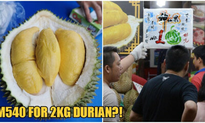 "Tourists Pay RM 540 For ONE Measly 2KG Durian Because Of Stall's ""Pay When You're Done"" Policy - WORLD OF BUZZ 3"