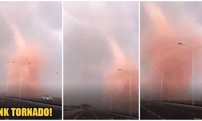 Watch: Man Drives Into Pink Tornado In Johor Believed To Be Caused By Chemical Pollution - World Of Buzz