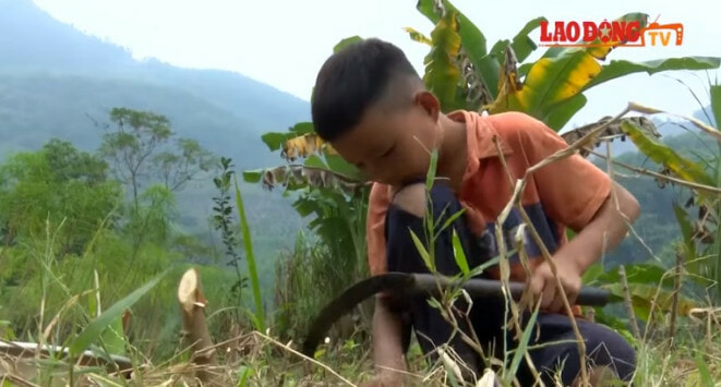 10yo Boy Lives on His Own & Grows Vege to Survive After Grandma and Father Dies - WORLD OF BUZZ 6