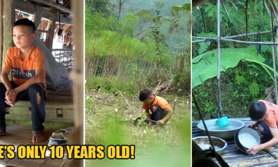 10yo Boy Lives on His Own & Grows Vege to Survive After Grandma and Father Dies - WORLD OF BUZZ 8