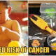 Beware: Plastic Toys Found In Thailand Could Place Your Child's Endocrine System At Risk - WORLD OF BUZZ 2