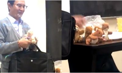 Good-Hearted Professor Brings Stuffed Animals As A Reward To Motivate His Students - WORLD OF BUZZ 1