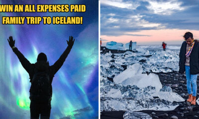 Grab the Chance to Win a FREE Family Trip to Iceland By Just Doing This! - WORLD OF BUZZ 7