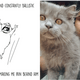 Guy Illustrates How His Adopted Cat Helped Him Deal With Depression - WORLD OF BUZZ 10