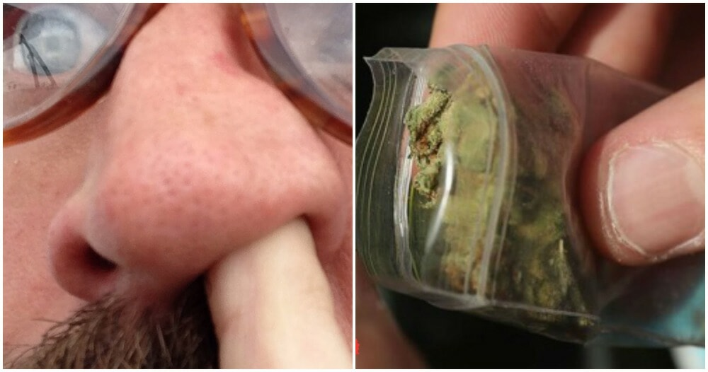 Australian Man Had Weed Packet Stuck In Nose For 18 YEARS, Said He Forgot About It - WORLD OF BUZZ