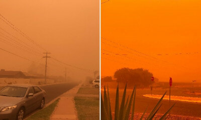 Skies in Australia Turn An Eerie Orange Due to Bushfires & Dust Storms, Code Red Declared in Areas - WORLD OF BUZZ 6