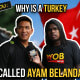 What Say You: Why Is A Turkey Called 'Ayam Belanda'? - WORLD OF BUZZ