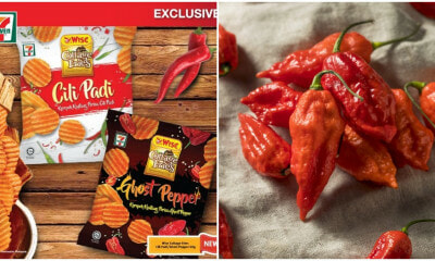 7-11 Just Released Wise Cottage Fries Ghost Pepper And Cili Padi Flavoured Chips To Satisfy The Chilli Monster In Us - WORLD OF BUZZ