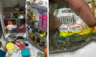 M'sian Finds Green Beans From 1999 in Fridge, Reminds Us All To Clean Up Before 2020 - WORLD OF BUZZ 1