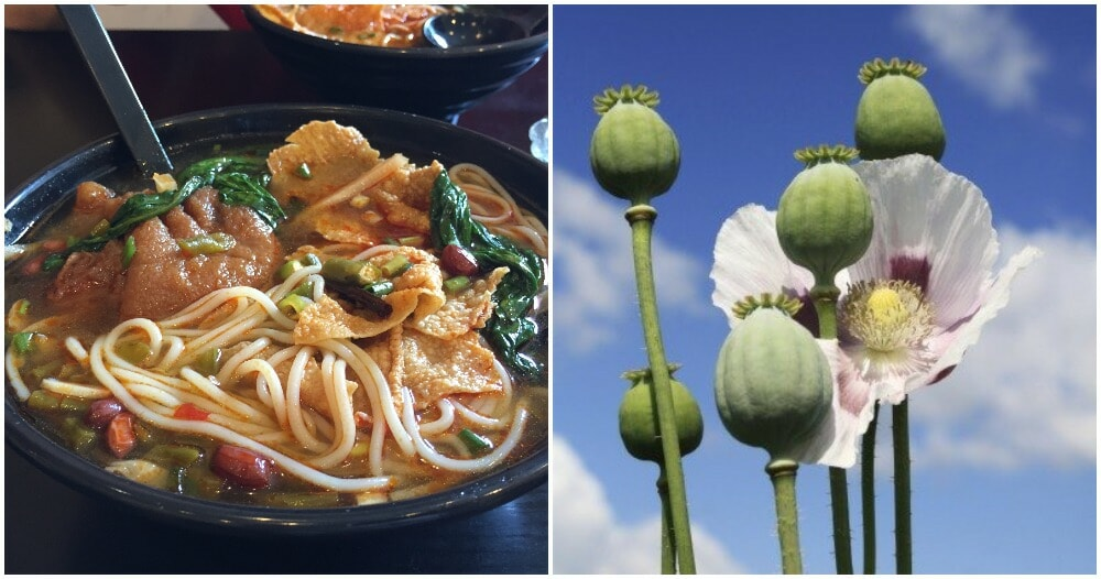 Noodle Shop Owner Arrested For Putting In Opium In His Noodles To Attract More Customers - WORLD OF BUZZ 1